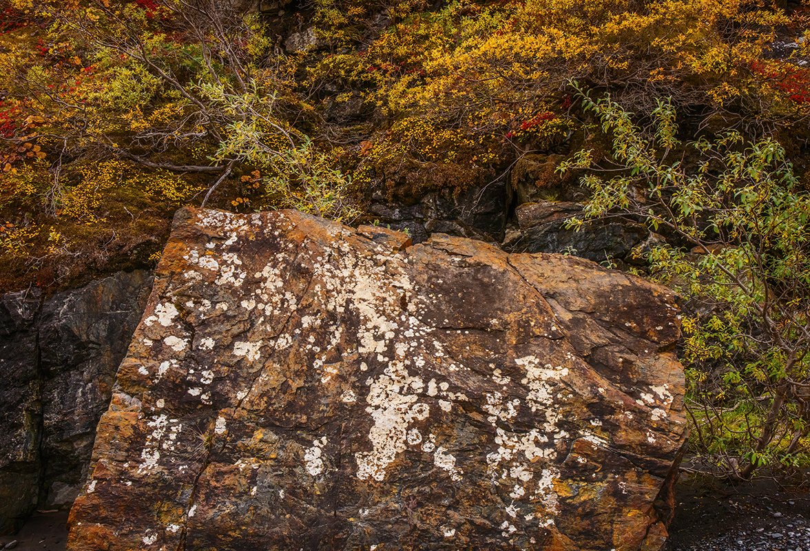 Rock and Fall Color along the Canning River